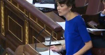 Interpelación de Rosa Martínez al Ministro de Energía