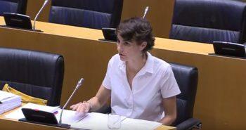 Rosa Matínez comparecencia ANFAC en el Congrso