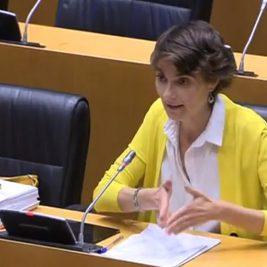 Rosa MArtínez en la Comisión de Cambio Climático